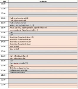Dagplanning ingevuld